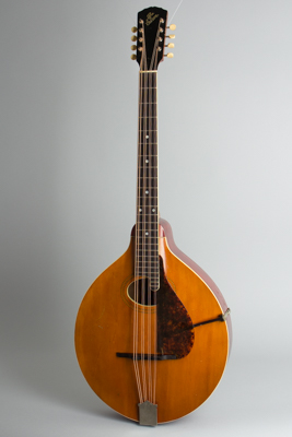 Gibson  K-1 Carved Top Mandocello  (1914)