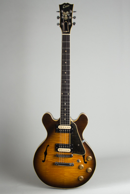 Steve Carr  Mini-335 Owned and used by Elliott Sharp Semi-Hollow Body Electric Guitar (1981)